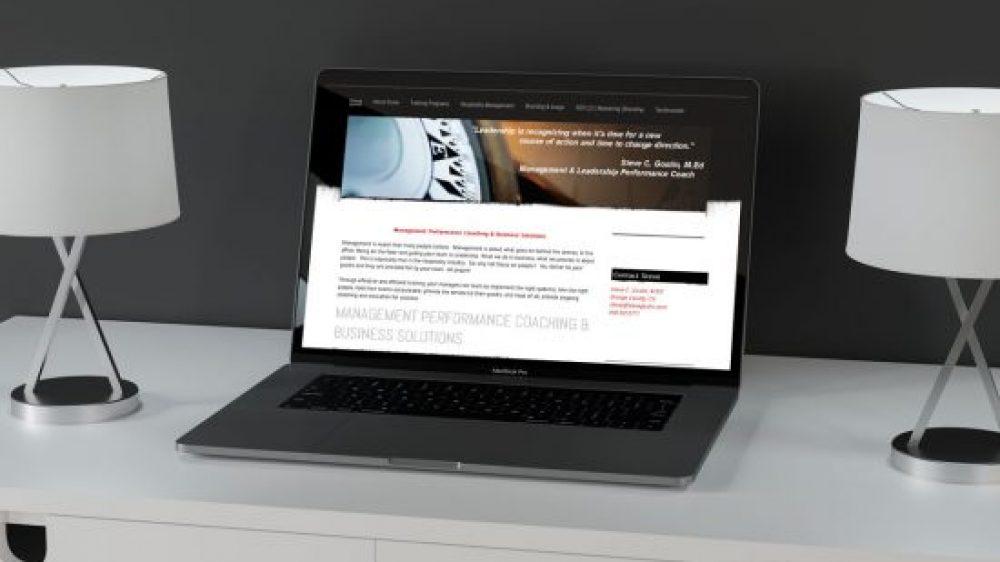 Steve Gostin E-Commerce Website Development
