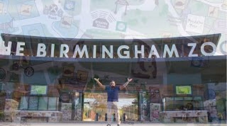 Cisco IT Security Makeover Series – Season 4 with the Birmingham Zoo